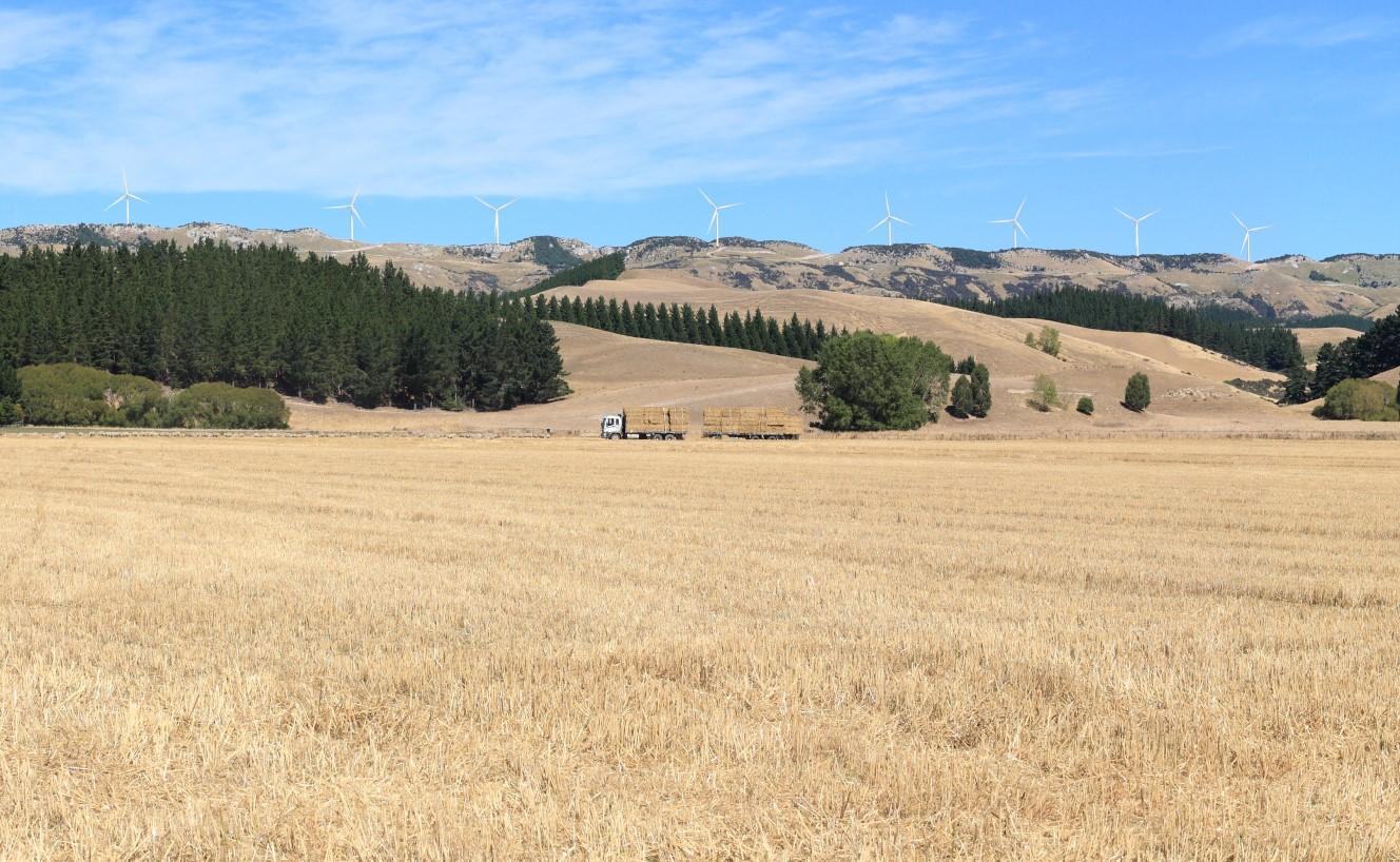Mt Cass Wind Farm Community Liaison Group Members